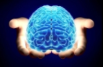 cerebro en tus manos